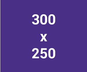 kích thước ảnh GDN 300x250