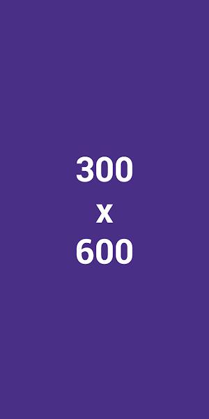 mạng hiển thị trên google ads 300x600
